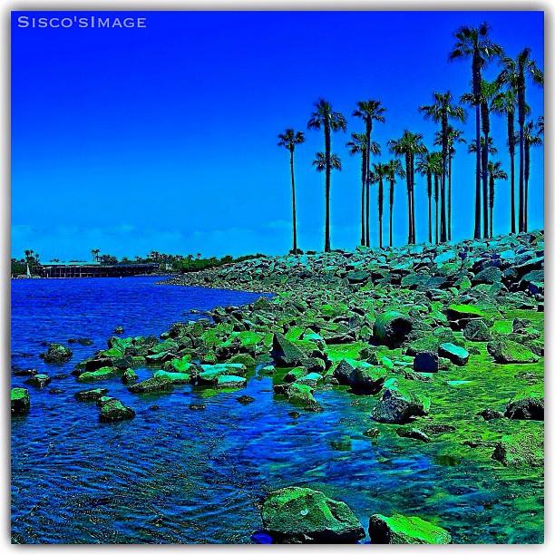 Be Cool 858 210 Dip blau