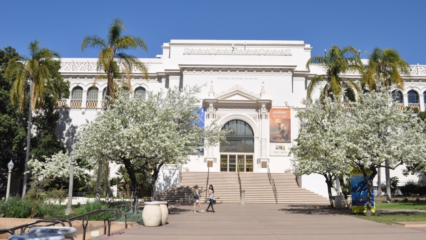 Balboa-Park-Natural-History-Museum
