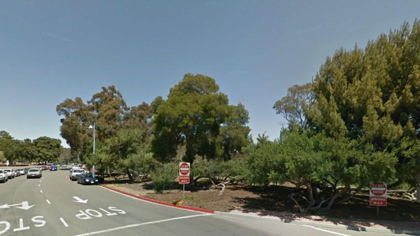 Balboa-Park-Trail-0114