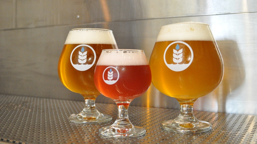 Hang Out at a San Diego Craft Brewery