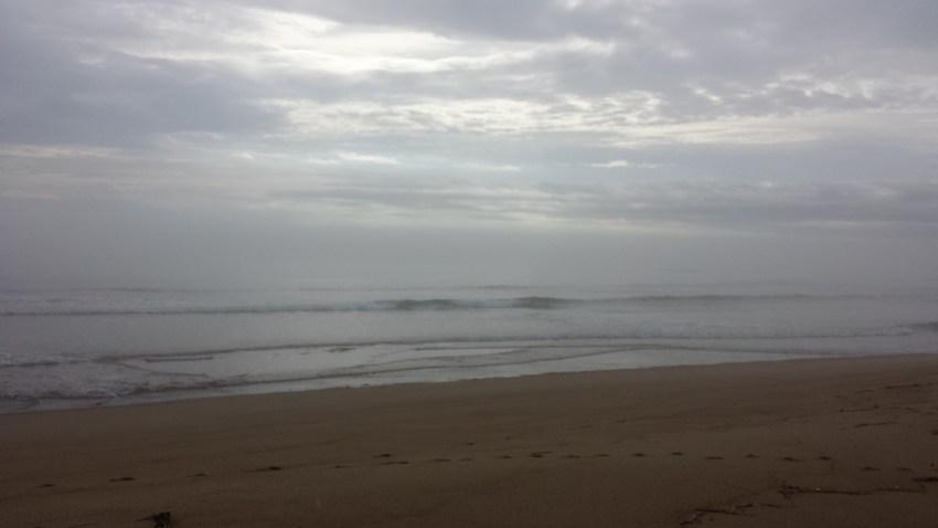 Cary J Casse Plum Island MA rain