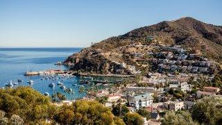Catalina-Island-Co-FiglewiczPhotography-00028