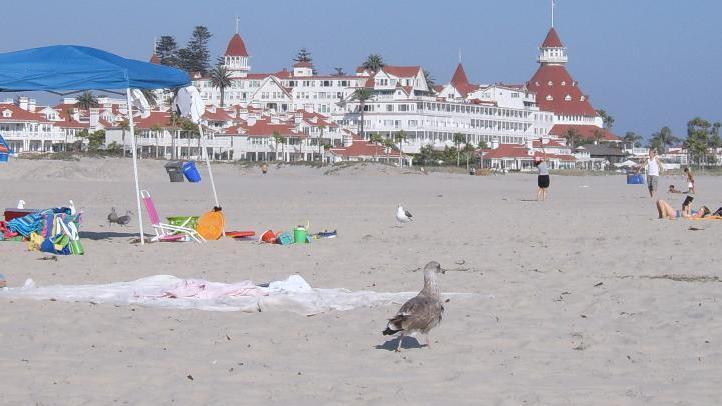 Coronado Beach 6r867