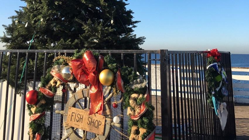 Crystal-Pier-Christmas-Tree-Garske-1