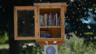 Little Free Library in Denver, Colorado