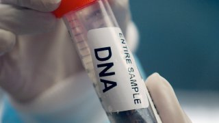 A vial containing a sample of DNA