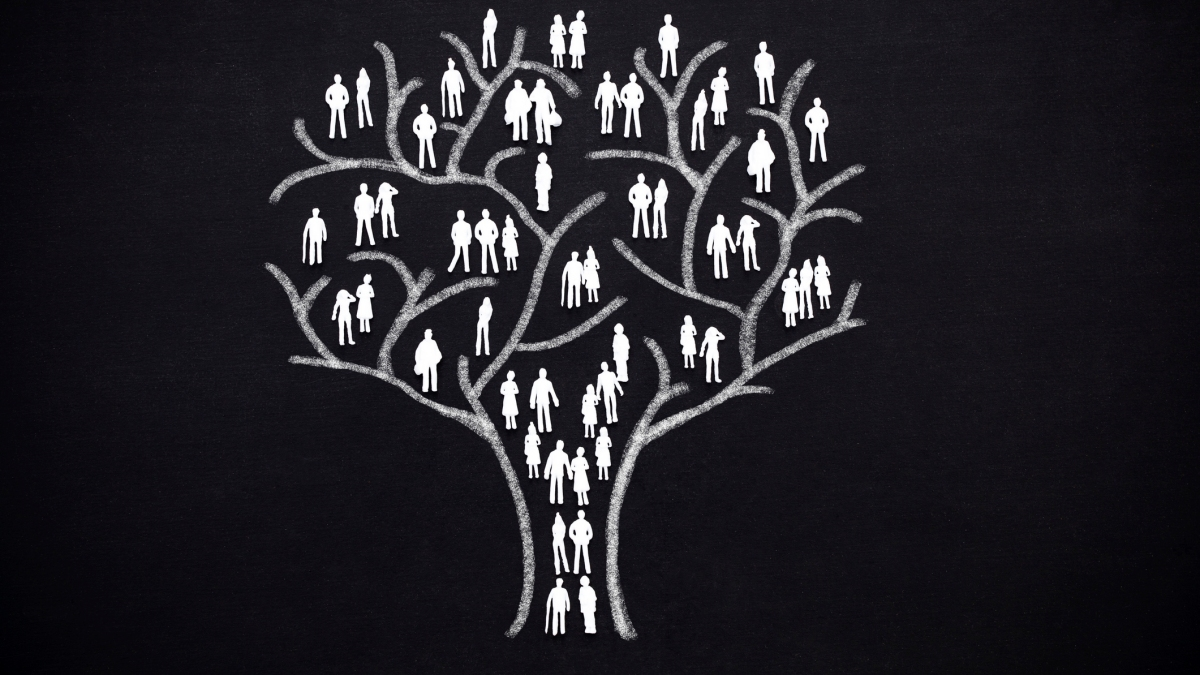 Genealogy, Family History And Stories cover image