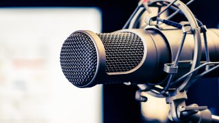 A file photo of a microphone.