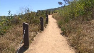 Hiking-generic-pic-san-diego