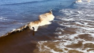 Surfers near Scripps Pier during the red tide