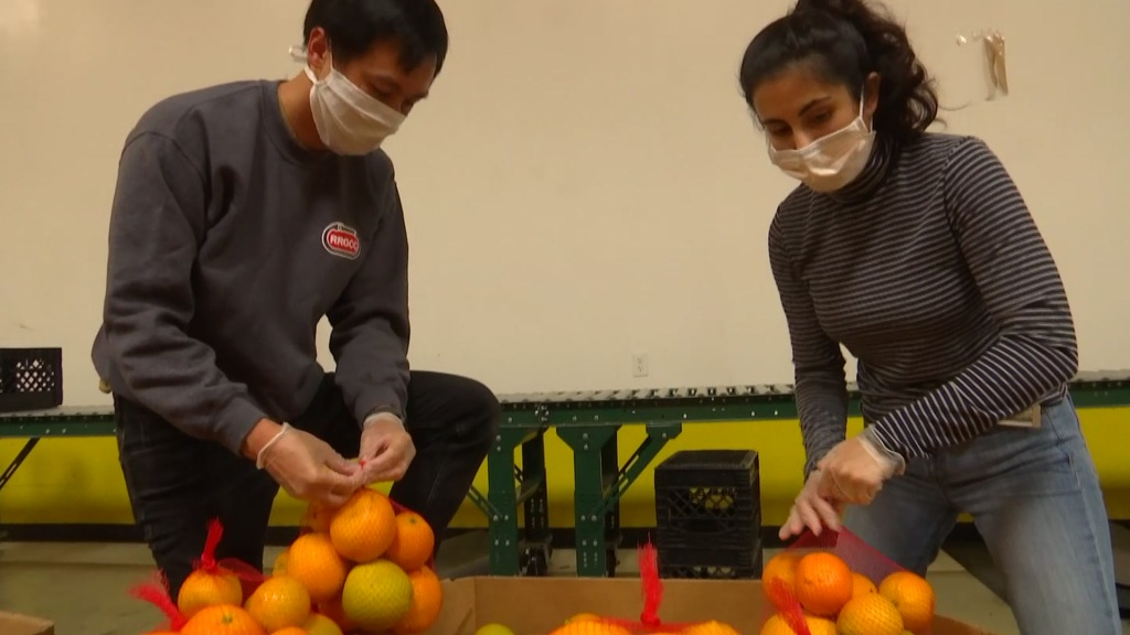 San Diego Foodbank volunteers bagging fruit.