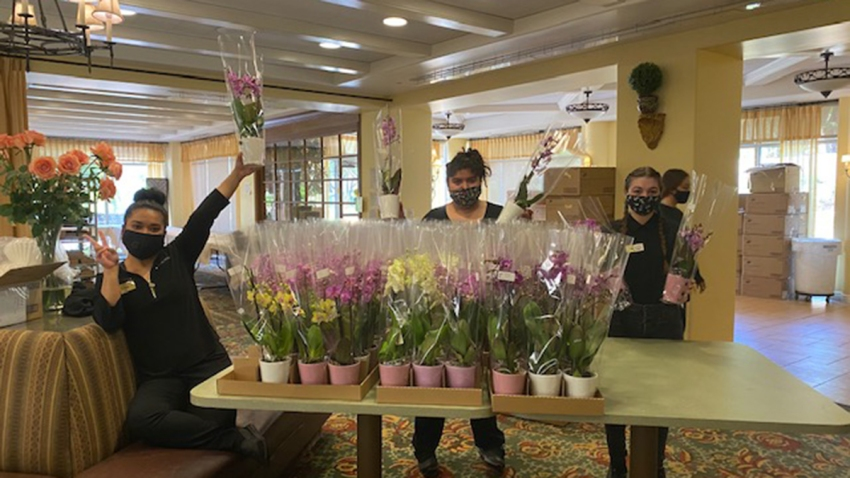 Some members of La Costa Glen distributing orchids on Friday from Westerlay.
