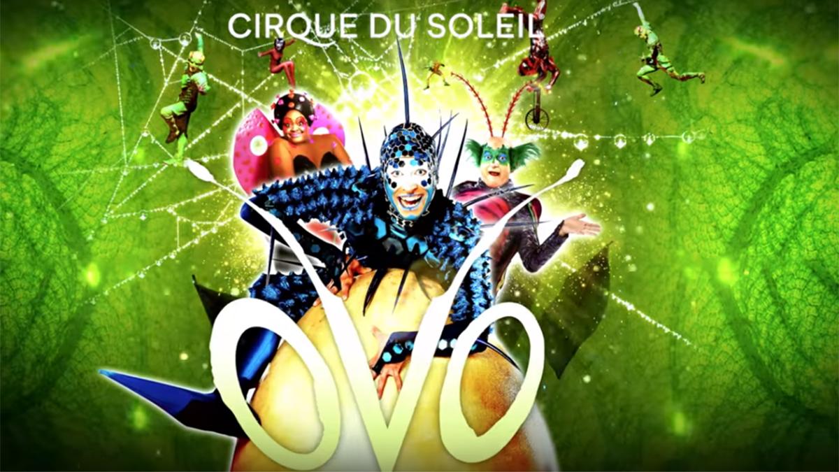 Cirque Du Soleil Ovo Video
