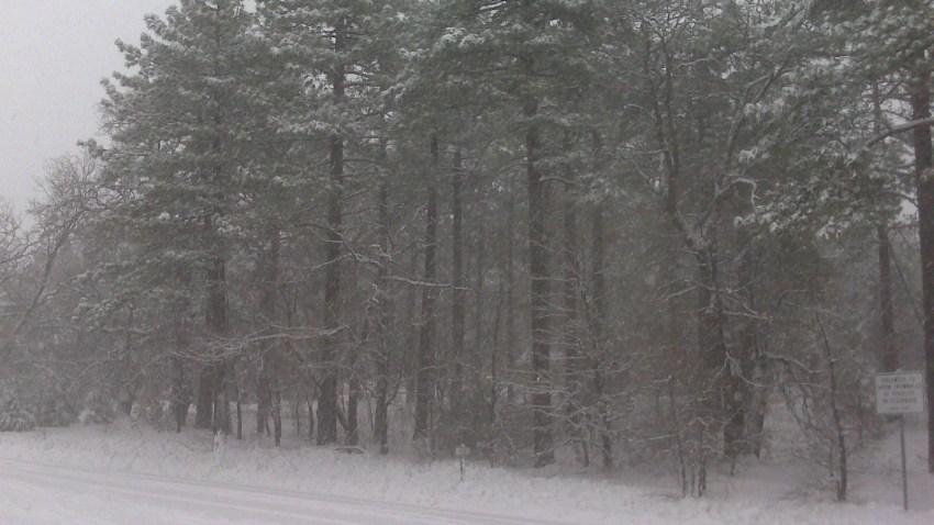 Payton Snow 2