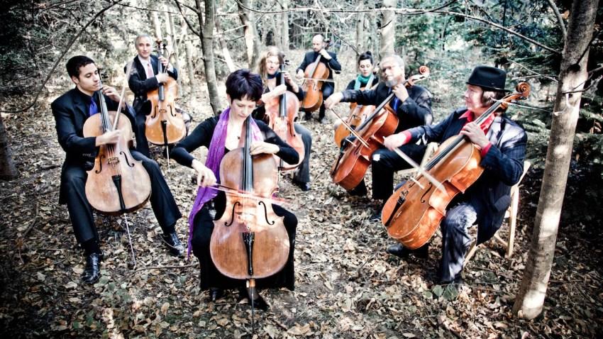 Portland Cello Project Press Photo