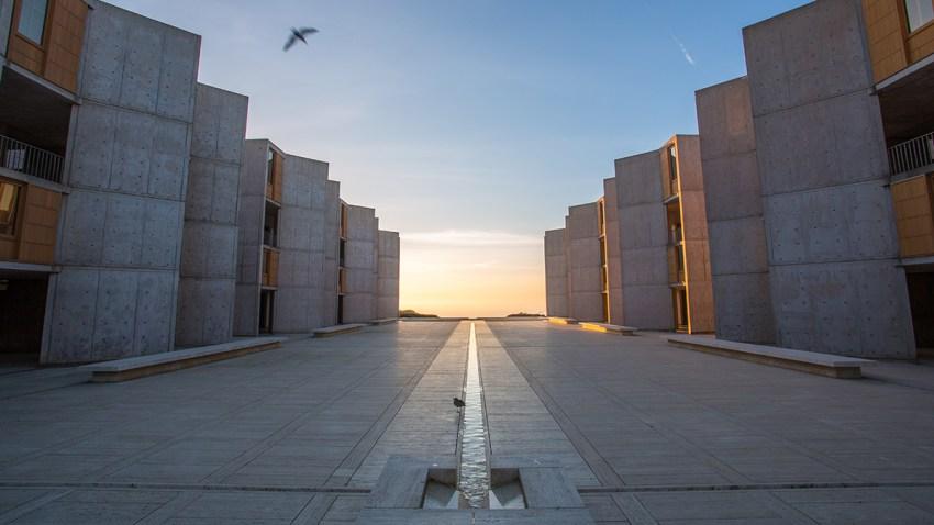 Salk-architecture-sunset_0X8C1775
