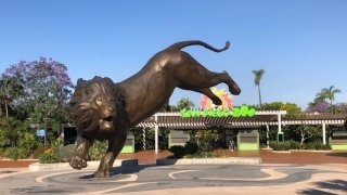 An image of the San Diego Zoo entrance.