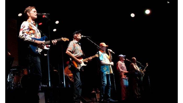 The Beach Boys by Steve Covault