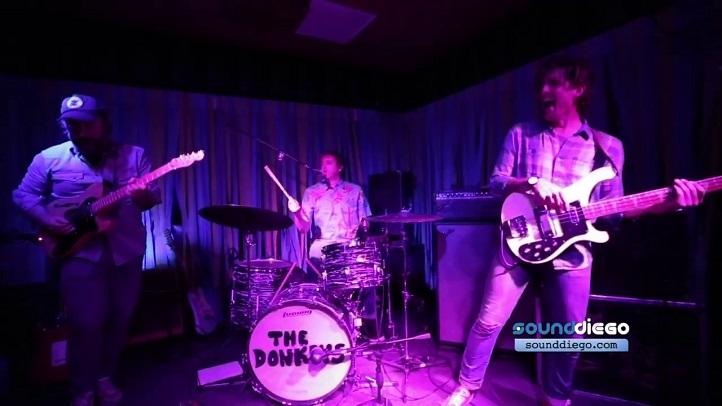 The Donkeys SD 2