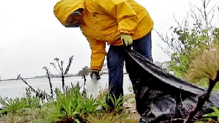 beach cleanup barnegat