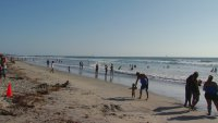 Vacation Planning in a Pandemic Puts San Diego as a Top Spot