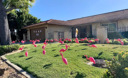 A home in Carlsbad is adorned with plastic, pink flamingos in its front yard, courtesy of realtors Graham and Kelly Levine.