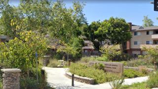 charles lewis III memorial park