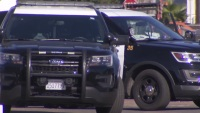 Upward of $10M Worth of Marijuana Products Seized From Illegal Chula Vista Pot Shop: Police