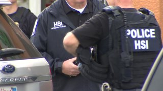generic ice agents homeland security hsi
