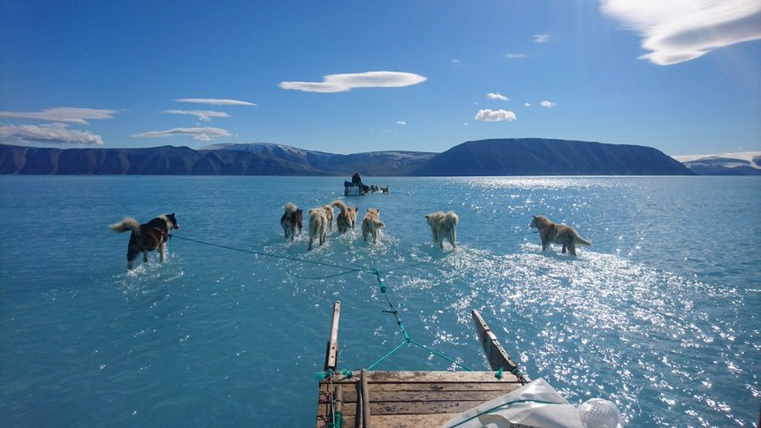 greenland ice melt arctic