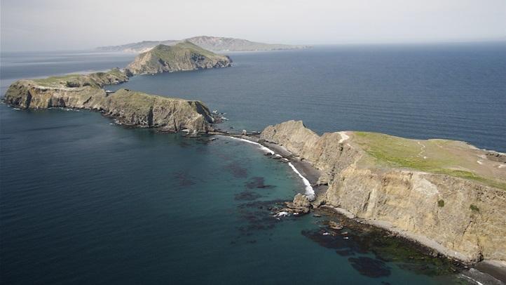 islandpackerssummer2014