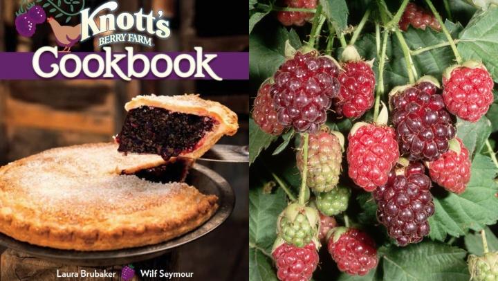 Knott's Cookbook Has That Theme Park Flavor