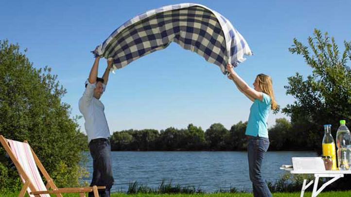 picnicgeneric