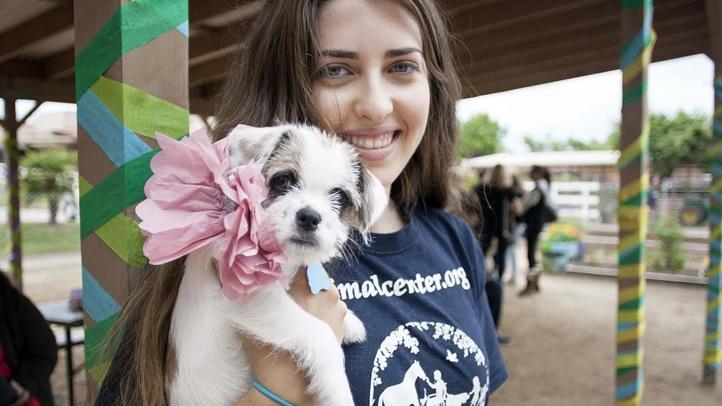 puppypromhelenwoodward1234