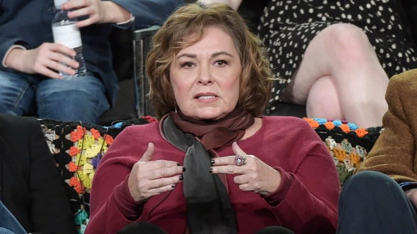 People Roseanne Barr