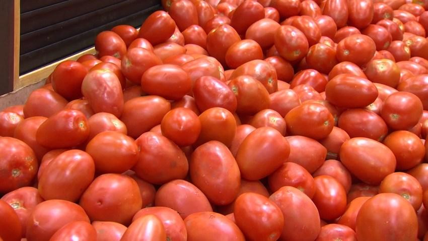 tomatoes-generic-060619
