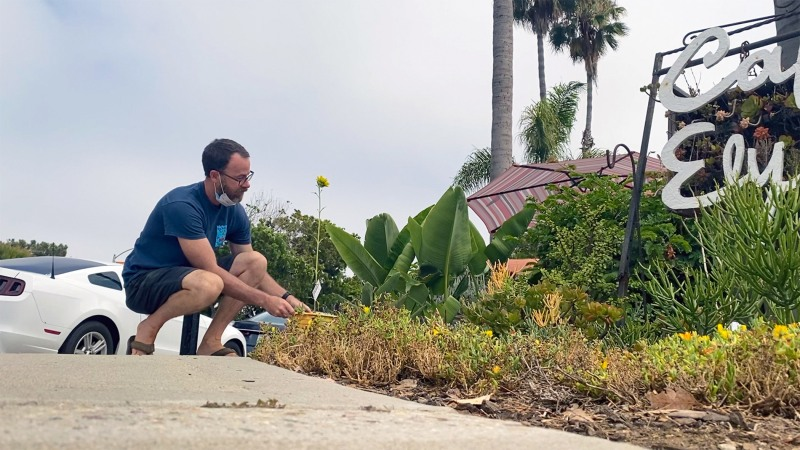 Pictures: Carlsbad Artist's New Project Plants Smiles on Locals' Faces