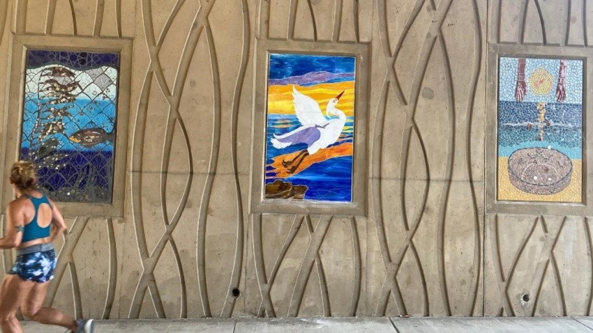 """""""Encinitas Up Close"""" captures the essence of the coastal city and can be seen at the pedestrian path under Interstate 5 at Santa Fe Drive and Encinitas Boulevard."""