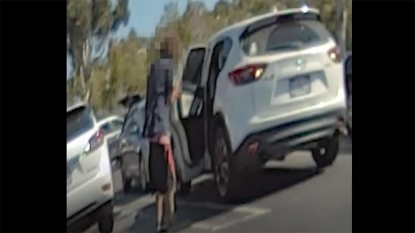 Vista Incident Surveillance Video