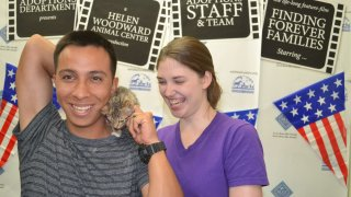 Vincent Benavente adopted his kitten Ice, at a Wags for Warriors event/