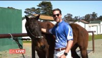 Watch Ross Play Polo for the First Time