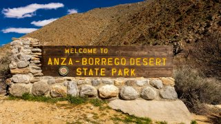 Welcome to ANZA BORREGO STATE PARK