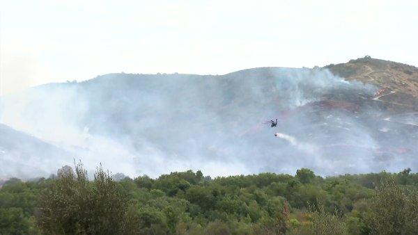 RAY RAW PALA FIRE 16 21 4214