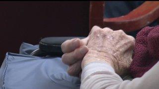 Generic Senior Hands