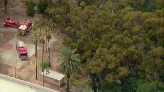 Fire crews battle blaze in Balboa Park