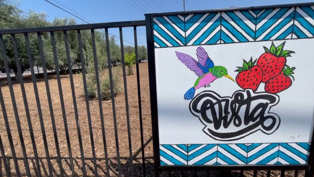 """A painting featuring a hummingbird and strawberries atop the word """"Vista."""""""