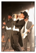 IMG_6793_2_2TheHives