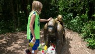 APTOPIX Zoo Gorilla Child Hurt