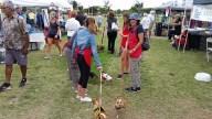 Doggie-Fest-0827-5