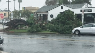 Rain-Damage-Tree-Down-Cass-Street_1985